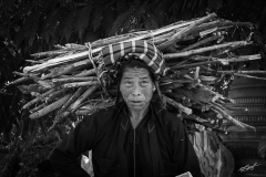 Log Lady of Myanmar
