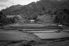 Myanmar in Monochrome-4-2